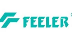 Feeler Forklift Ege Bölgesi Yetkili Servisi Olduk